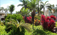 Beautiful Landscaping At The Palms Of Wailea Condos