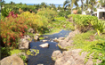 The Lush Tropical Grounds Of The Palms Of Wailea
